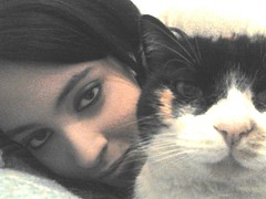 love my cat! (Solange Parducci) Tags: barcelona china california birthday christmas city family flowers blue autumn friends england blackandwhite bw food dog baby india house holiday chicago canada black france flower color berlin cute green bird art fall love film beach halloween church girl car fashion birds animals bike festival architecture clouds cat canon germany garden de geotagged fun island graffiti hawaii dance football concert asia europe italia day lulu florida band australia forever gatto amore iphone ntimas reveladoras iphoneography instagramapp