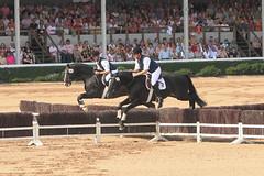 17.09.2006-14.08.34.jpg (Heizfeiz) Tags: tiere pferde warendorf hengstparade