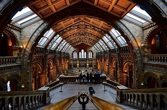 NHM - Top Floor (Paulo N. Silva) Tags: uk thenaturalhistorymuseumlondon