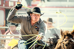 loop d loop (bugeyed_G) Tags: arizona southwest cowboy desert tucson rodeo americana tiedown roper thepinnaclehof kanchenjungachallengewinner bugeyedg tphofweek217