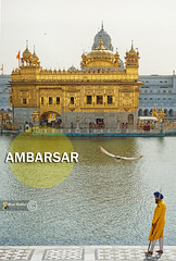 Ambarsar (~FreeBirD~) Tags: india sunshine architecture gold flying travels power path traveller seva human guide framing sikh punjab kirtan visitor amritsar sikhism thebird pag journeys goldentemple gettyimages ambar darshan guided freebird travelindia theone nikonian thegoldentemple manandnature sarovar thereligion theeternal perfectshot thepower thebase amazingpicture gurbaani ambarsar darbaar manibabbar darbaarsahib punjabstate worldpicture unseenbeauty nikond700 thefaith indianturban nationalgeographicpictures ngpictures thesikhreligion manibabbarphotography thetruepicture indiabyindian natgeopic mustseeinindia ambarsariya ambarsaria