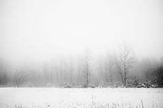 ...epifania... (UBU ♛) Tags: blancoynegro blackwhite noiretblanc blues biancoenero ©ubu unamusicaintesta landscapeinblues luciombreepiccolicristalli