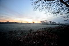 Sunrise.... (Dafydd Penguin) Tags: sunrise nikon frost cheshire sigma superwideangle d600 superwide sigma14mm