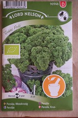 Persille / parsley (@abrunvoll) Tags: vegetables gardening seed seeds parsley hage fr 2013 persille grneperle gronnsaker