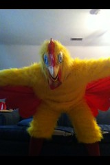 Chicken suit 73 (ChickenJay) Tags: bird chicken yellow happy zoo costume transformation mask wing beak suit talon hen birdbrain toony