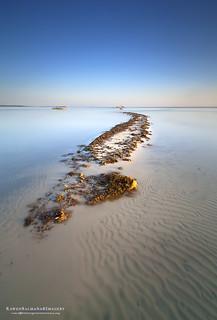 where tides meet
