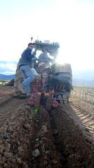 0056VIÑEDOS-plantar-injertos-(22-3-2013)-P1020061 (fotoisiegas) Tags: viticultura viñas viñedos cariñena plantar injertos fotoisiegas lospajeras