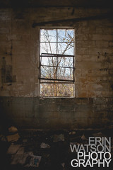 (Erin Watson/Abandoned Exploration) Tags: trees urban brick abandoned broken window glass canon midwest photographer open decay kentucky empty exploring forgotten grime exploration ue urbex 2013 erinwatson erinwatsonphotography