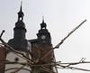 Townhall and plane-tree (:Linda:) Tags: germany easter town cityhall thuringia townhall rathaus renaissance planetree platane sycamoretree hildburghausen ahornblättrigeplatane