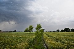 MAK_0430 (Aslam Khan - PK) Tags: storm lightening wheatfields bahawalpur khanewal chiminy