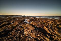 M1150823.jpg (meerecinaus) Tags: longreef beach