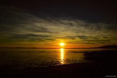 Sunset at Iona Beach Regional Park (E*x*p*l*o*r*e*d) ( Peteron Phtography) Tags: ionabeachregionalpark beach sandybeach driftwood sunset nightsky nightphotography richmond britishcolumbia canada nikond5200 nikon silhouette marsh marshland birds shorebirds wildlife spit shoreline shores walking trails sky colorfulsunset regionalpark bcparks