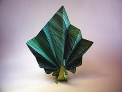 Peacock - Marc Kirschenbaum (Rui.Roda) Tags: origami papiroflexia papierfalten pavo real pavo paon peacock marc kirschenbaum