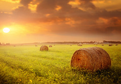 :: dakota sunset :: (mjcollins photography) Tags: southdakota hay bales field skies light sun set evening clouds prairie outside outdoor farm