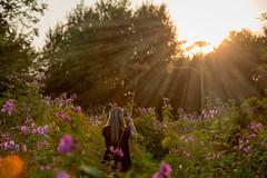 xxx (Warwick Tams) Tags: sun set sunset canon 80d light rays colour color