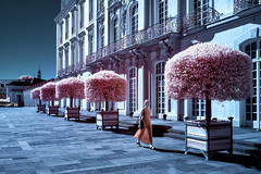 Behind the mirror your aura is your dress (gambajo) Tags: infrared ir infrated 700nm castle augustusburg brühl germany girl woman trees architecture street streetphotography blue purple orange aura surreal unreal pass passing colors unesco culture heiritage