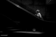 Los Angeles (Rinzi Ruiz [street zen]) Tags: rinziruiz monochrome streetphotography life usa california fujifilm23mm14 city streetzen losangelesstreetphotography streetphoto bw art lightandshadow candid blackandwhite fujifilmxus urban fujifilmxt1 5yearsofxseries light fujifilm