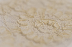 Lace for Lorna (L E Dye) Tags: extentiontube20mm macromonday thefirstletterofmyname alberta canada cropped d5100 ledye lace macro nikon maureenslace