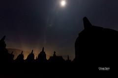indonesia-078 (Giuseppe Ruperto) Tags: fotografie foto photos photo viaggi viaggio photography viaggiare street travel trip indonesia java borobudur temple yogyakarta buddha unesco