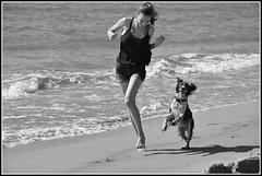 Jeux sur la plage (krisphy) Tags: animaux amiti beach chien dog eau europe exterieur france french filles girls holidays hrault nikon jeux jeunes blackandwhite blackwhite littoral mer mediteranne noirblanc plage sable vacances water