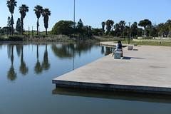 AM views (Rushay) Tags: water lake nikon d610 50mm trees