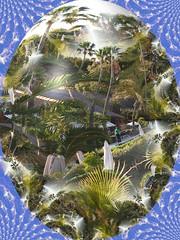 Palmas de Mallorca (EdgarJa) Tags: egg ei osterei easteregg color palmas palmen experimental