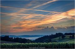 Stocki (Hanspeter Ryser) Tags: morgenstimmung stocki zell willisau himmel lichtstimmung sonnenblumen sonnenaufgang wald nebel landschaft landscap lucern switzerland sonne