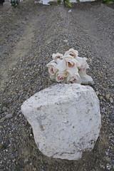 Nunca fuimos angeles. (elojeador) Tags: tumba tmulo piedra rosa flor ramo grava gravilla tierra cementerio cementeriodeljar nidemonios elojeador