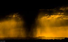 Rain and sunset (Daniel Arnaldi) Tags: australasia australia landscapephotography newington oceania sydney clouds sky storm sunset sundown weather danielarnaldiphotographer