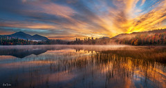 night and day ([Adam Baker]) Tags: statepark morning autumn clouds forest sunrise canon reeds adirondacks whiteface adambaker canon24105l connerypond 5dmkii