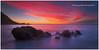 Firebrush (Dylan Toh) Tags: seascape photography australia southaustralia victorharbor fleurieu everlook landdscape petrelcove ☆thepowerofnow☆