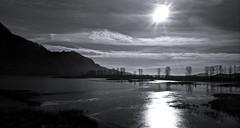 Pitt-Addington Marsh Wildlife Management Area (Xfour00) Tags: blackandwhite bw sun canada vancouver clouds nokia bc britishcolumbia mapleridge pittlake pittriver mountaints 808 pittmeadows pureview pittaddingtonmarshwildlifearea
