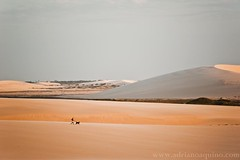 Jericoacoara V - Dunes // Dunas (Adriano Aquino) Tags: praia beach nature jericoacoara desert dunes natureza playa cear dunas deserto jeri jijoca adrianoaquino