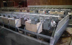 Commercial rabbit production (baalands) Tags: france rabbit farm conejo research production does toulouse lapin cages inra rabbitry cuniculture