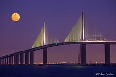 Skyway Bridge, St Petersburg, Florida. (pedro lastra) Tags: bridge usa architecture tampa nikon florida d600