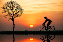 Silhouette of a cyclist at sunset (Patrick Foto ;)) Tags: park travel autumn boy sunset summer sky people sun mountain lake man reflection guy beach sports water field bike bicycle silhouette sport yellow race speed sunrise thailand outdoors person evening cyclist tour ride riverside outdoor background hill wheels young journey shore cycle biking biker bicyclist leisure recreation rise rider vector active trat kokut