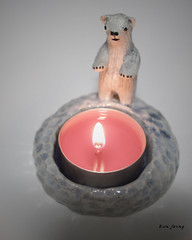 candleholder (danahaneunjeong) Tags: bear ceramic candle polarbear polar candleholder icebear