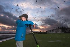 after the storm (zip po) Tags: city winter sunset dublin storm birds evening child clontarf