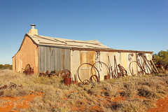 Wooleen Station (David Foster Photos) Tags: blue red sky brown sun sunlight building texture abandoned sunshine station yellow horizontal barn buildings landscape evening landscapes spring rust iron skies afternoon post timber steel bare au gray barns shed australian ruin machine rusty dry sunny australia september machinery outback disused cloudless sunlit pastoral posts inland barren derelict deserted arid westernaustralia isolated grazing textured murchison sheds 2012 corrugatediron ruined westaustralia galvanised disrepair galvanized brightly westaustralian westernaustralian pastoralist centralwesternaustralia wooleen wooleenstation