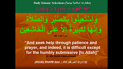 (Islamic knowledge) Tags: english muslim pray praying arabic muslims  allah quran salah   sura    sunna