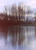 dutch winter (4) (bertknot) Tags: winter reflections reflecting mirror dutchwinter mirroring weerspiegeling dewinter winterinholland reflecties weerspiegel winterinthenetherlands hollandsewinter winterinnederlanddutchwinter