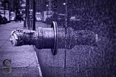 Random Hydrant Reflections (1 of 1) (Singing With Light) Tags: city nyc ny photography pentax k5 2013 singingwithlight 2013ctfebruaryk5nynycsingingwithlightcitypentaxphotography cfebruary