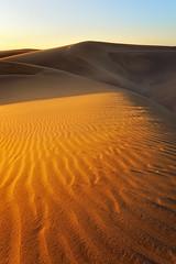 Shadow Dunes / Gran Canaria, Spain (Michael Gross) Tags: wondersofnature