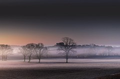 Layers of coldness (Eric Goncalves) Tags: trees winter mist cold color nature field fog landscape gloucestershire layers array nikond7000 ericgoncalves rememberthatmomentlevel4 rememberthatmomentlevel1 rememberthatmomentlevel2 rememberthatmomentlevel3 rememberthatmomentlevel5 rememberthatmomentlevel6