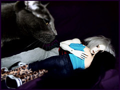 The Beast (serenity jenny) Tags: white love cat ball couple doll skin vincent romance elf willow bjd fairyland joint eliya vito souldoll minifee sharics