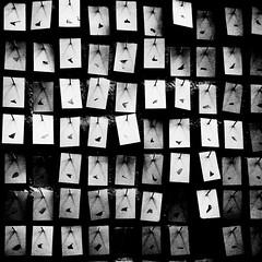 (morbs06) Tags: light shadow bw abstract art lines germany paper square düsseldorf kunstakademie rundgang