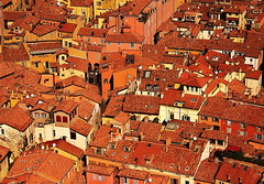 bologna (martin streichardt) Tags: city houses red italy cityscape roofs bologna
