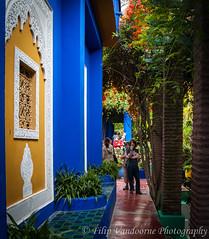 Tourists in the Majorelle garden ! (filipmije) Tags: blue color colour garden colours morocco marrakech majorelle marrakesh majorellegarden