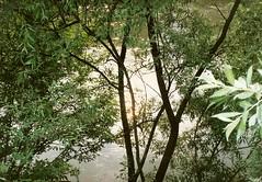 060_Tisza_1992 (emzepe) Tags: rio river ukraine 1992 tisa kirnduls fleuve ukraina theis  tisza nyr oblast rahiv  flus ukrayina jlius ukrajna foly krptalja rakhiv regiunea zakarpatska rachov zakarpattia     rah  subcarpatia  szervezett krptaljai rahu