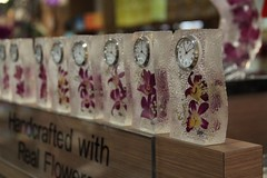 Saat ve Malezya Gl (ceco23) Tags: flower colorful watch malesia saat iek